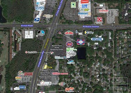 Carrollwood Automotive - Tampa