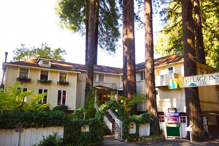 Hotel and Restaurant/Bar on Russian River - Monte Rio