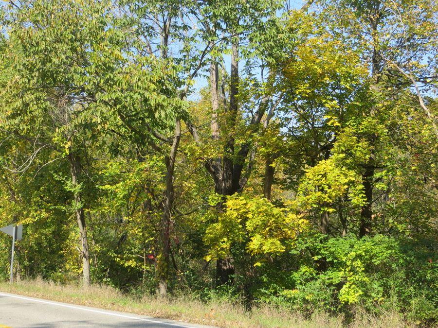 Ann Arbor Residential Development Vacant Land for Sale
