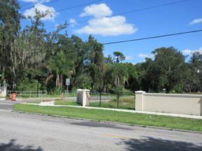 Curiosity Creek Subdivision - Tampa