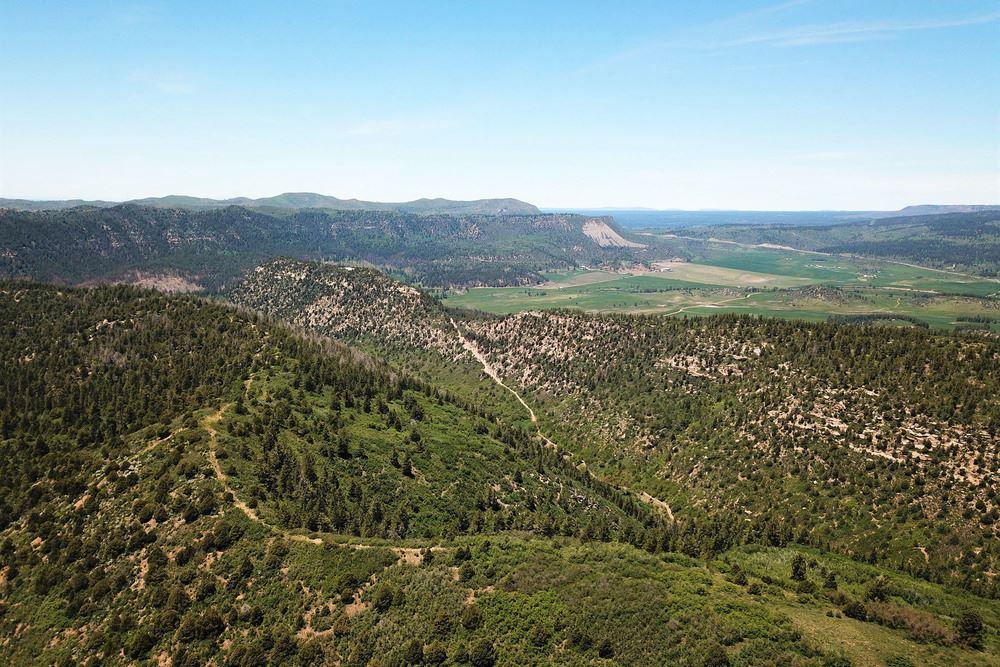 La Plata Mountain Ranch