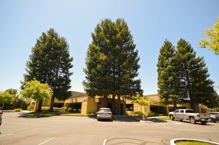 The Redwoods - Petaluma