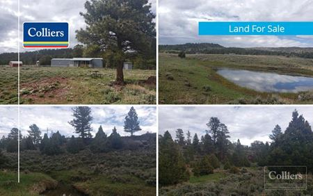 Diamond Mountain Land - Jensen