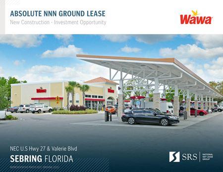 Sebring, FL - Wawa (Valerie) - Sebring