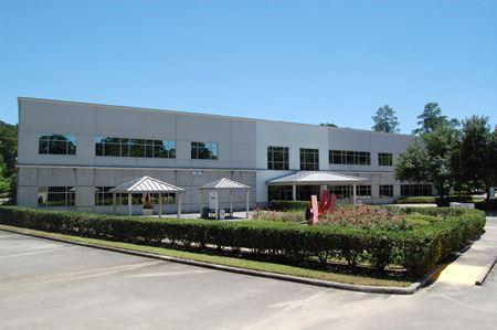 Offices at Interwood - Houston
