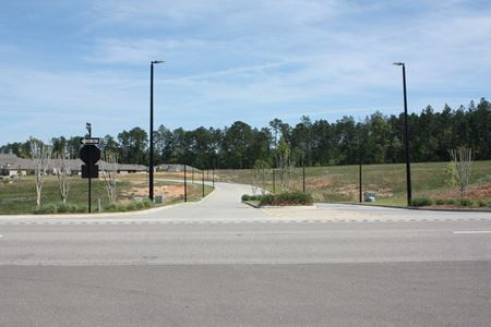Undeveloped Commercial Land   Opportunity Zone - Hattiesburg