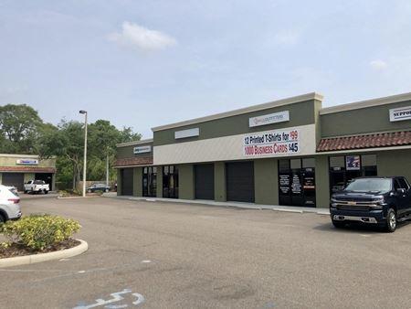 13765 N. Nebraska Ave - Tampa