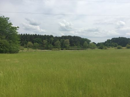 143 Acre +/- Pasture and Timber Property in Utica, MS - Utica