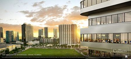 Wynwood Starts Here - Miami
