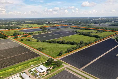 West Plant City Acreage - Plant City