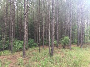 402 Acres - Copiah County, MS - Wesson