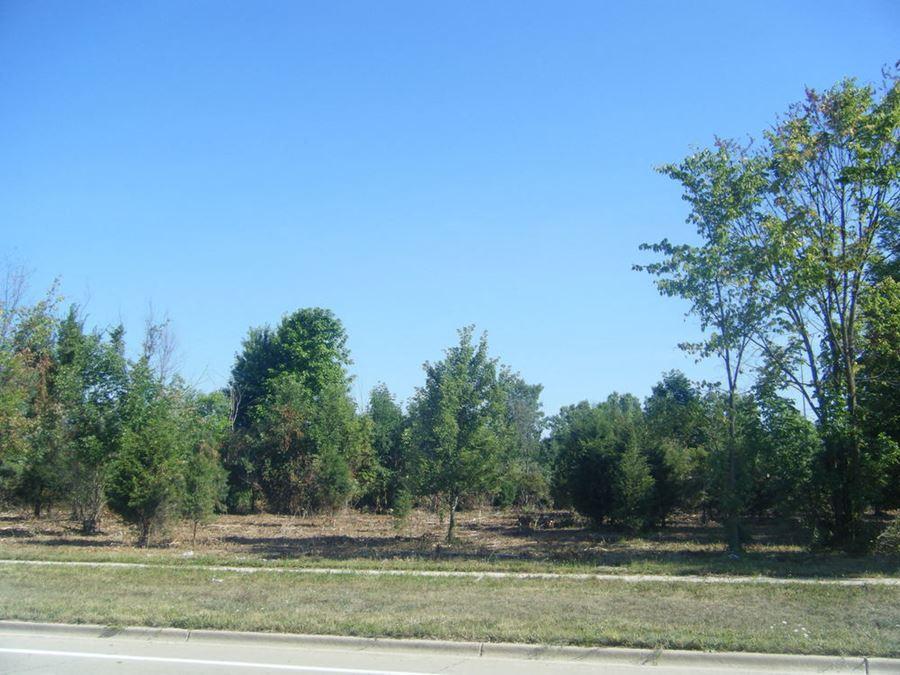 Vacant Land - Jackson 8 acres