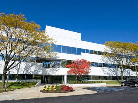 Office Freedom | 411 Theodore Fremd Avenue