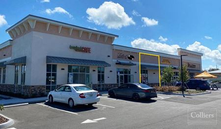 882 SF Retail In Mount Dora - Last Space Available - Mount Dora