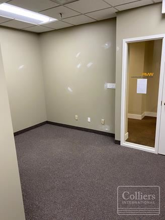 44 E 8th Street #205 | Downtown Holland Office Space - Holland