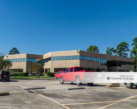 Nanes Professional Building - Houston