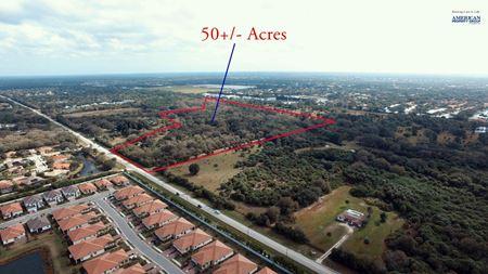 50+/- AC Land Development Site on E Venice Ave - Venice