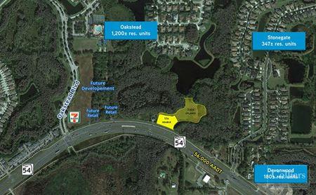 SR 54 Parcel - Oakstead - Land O' Lakes