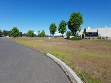 Mt. Spokane Village Pad Site - South - Mead