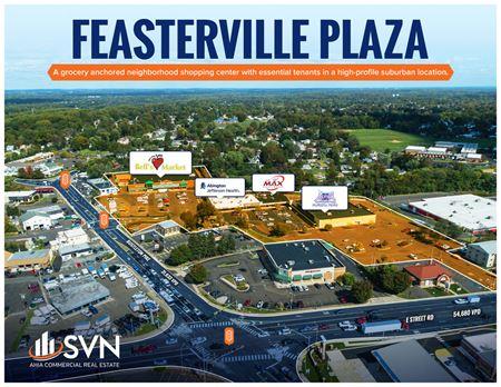 Feasterville Plaza - Feasterville