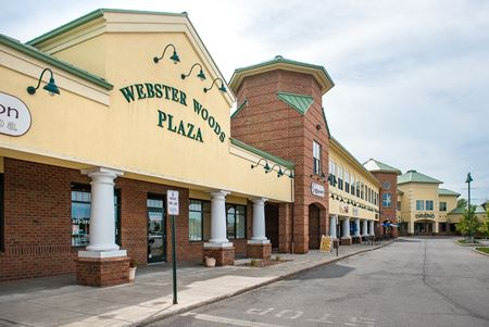 Webster Woods Plaza - Webster