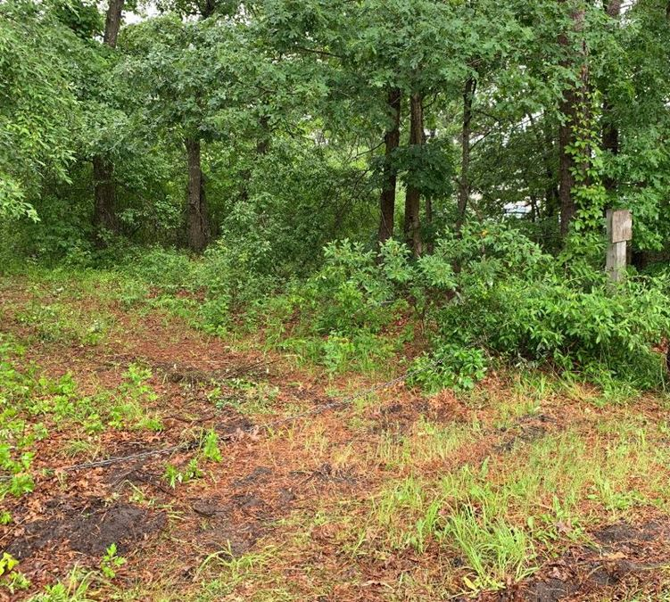 Land Property For Sale In Speonk