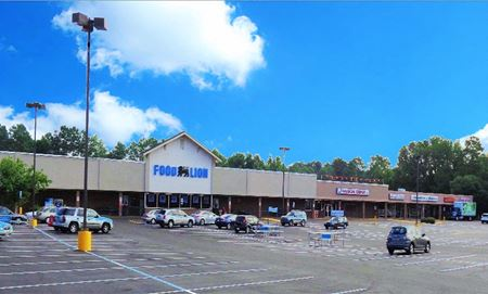 Food Lion Shopping Center - Florence