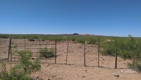 ± 638 Acres - La Mesa