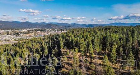 MAJESTIC RIDGE   +/- 232 Acres in Coeur d'Alene Idaho - Coeur d'Alene