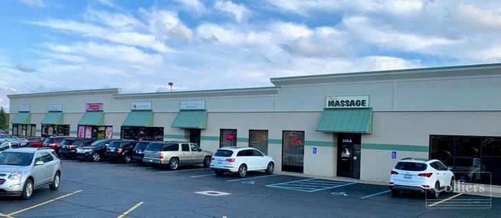 Shopping Center for Sale - Holland, MI