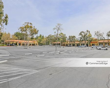 Oak Park Shopping Center - Oak Park