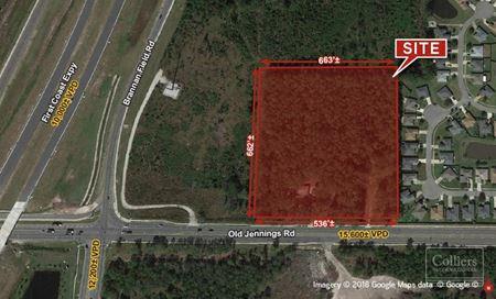 7.92± AC Land | CR220A in Middleburg, FL - Middleburg