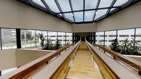 Class A Office Tower 1555 - West Palm Beach