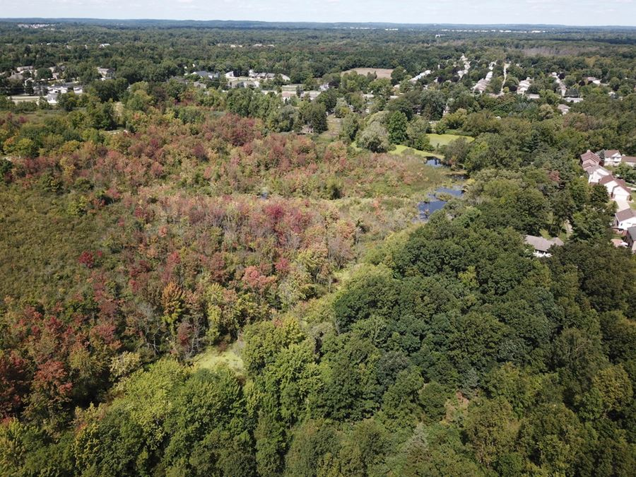 Wooded 20 acres - Residential