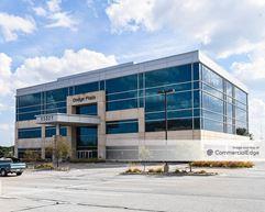 Dodge Plaza - Omaha