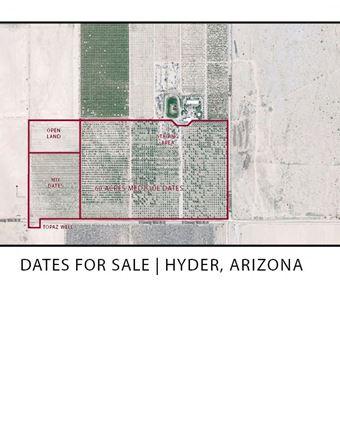 Hyder Dates