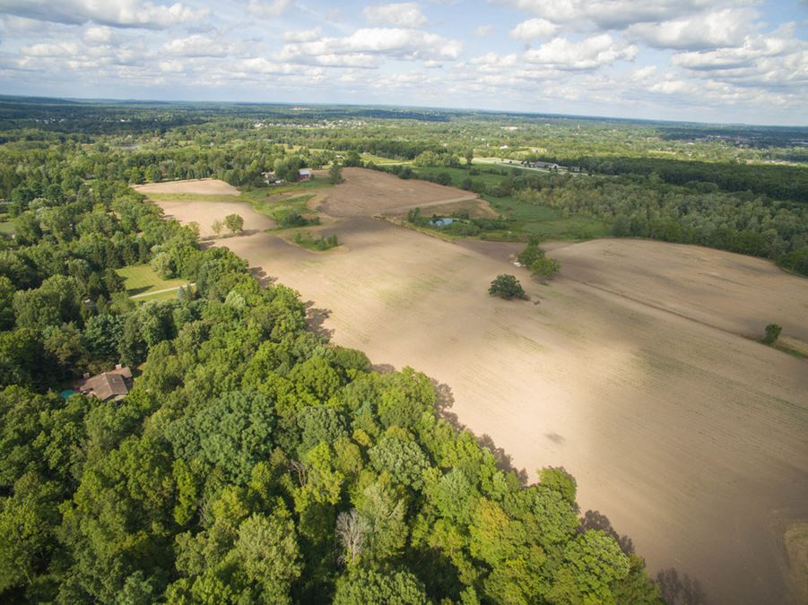 Estate Size Vacant Land for Sale in Dexter