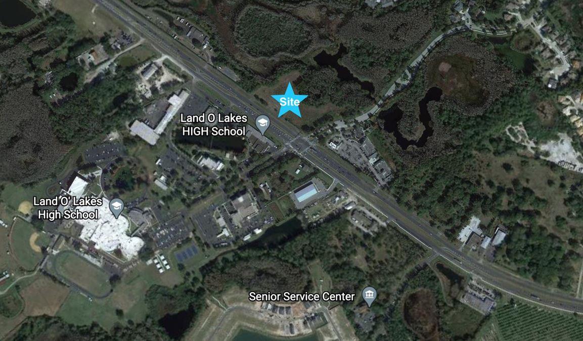 7140 Land O' Lakes Blvd.