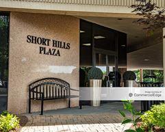 Short Hills Plaza - Short Hills