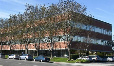 3130 La Selva Street - San Mateo