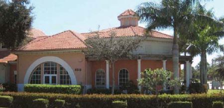 Corkscrew Palms - Estero