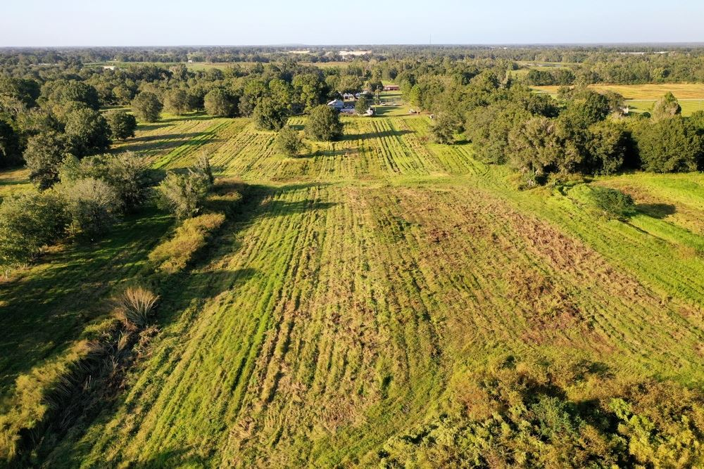 Wauchula Commercial Land