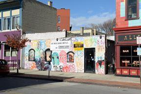 249 Allen Street - Buffalo